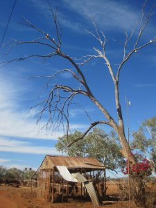 The beauty of the rugged and arid area: red earth, blue sky and a derelict shed