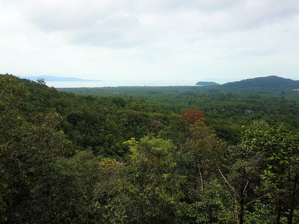 View to the jungle and sea from Dom Sila