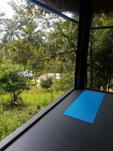 a corner of the shala with one yoga mat and green jungle in the background