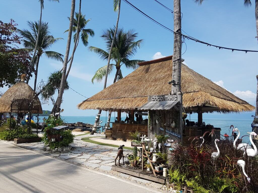 Coco Tam's bar with tall palm trees around it