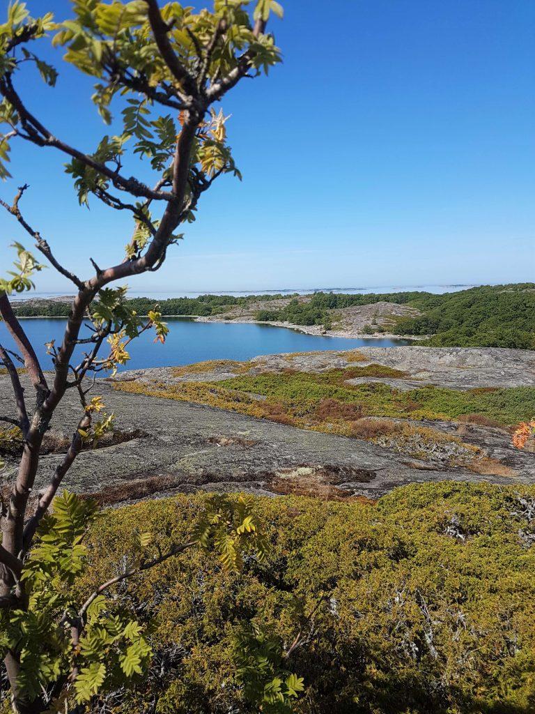 Sunny day in the Finnish archipelago