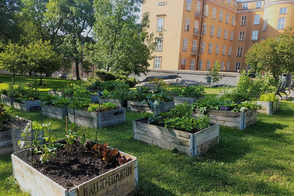 A park with gardening boxes