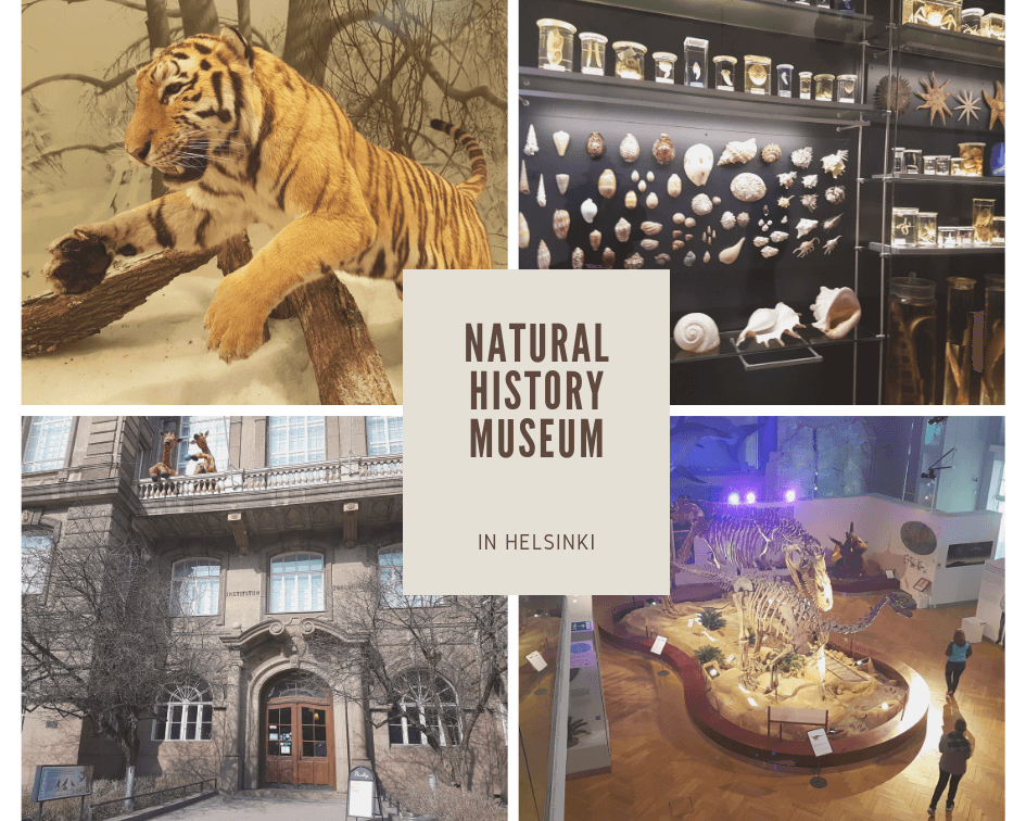 Natural history museum pic collage